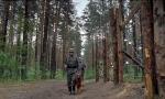 Скачать сериал Охота на Вервольфа [2009] DVDRip