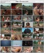 Скачать The Vixens of Kung Fu [1975]