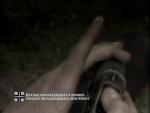 Брестская крепость (2006) DVDRip