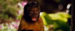 Скачать фильм Мой парень из зоопарка / Zookeeper (2011)