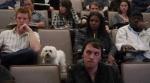 Скачать фильм Чудо-пёс (2011)
