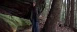 В хорошем качестве Хижина в лесу: Новая глава / Demon Hole [2017]